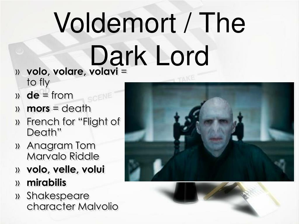 Voldemort / The Dark Lord