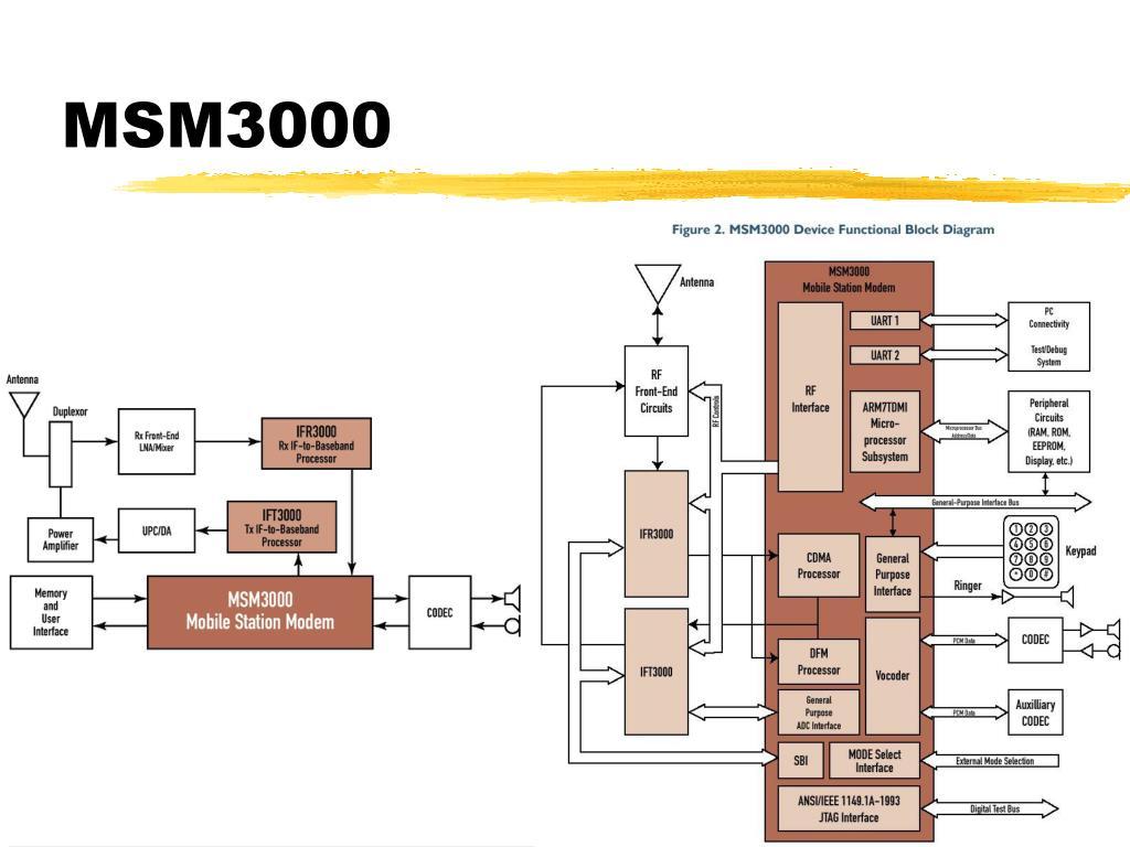 MSM3000