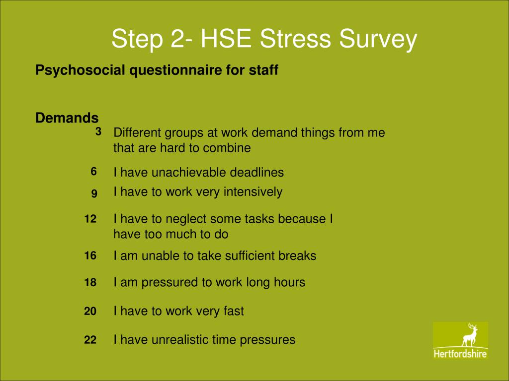 Step 2- HSE Stress Survey