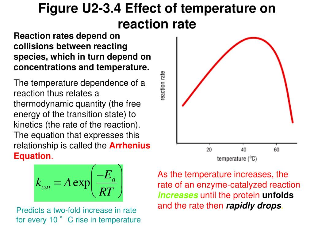 Figure U2-3.4 Effect of temperature on reaction rate