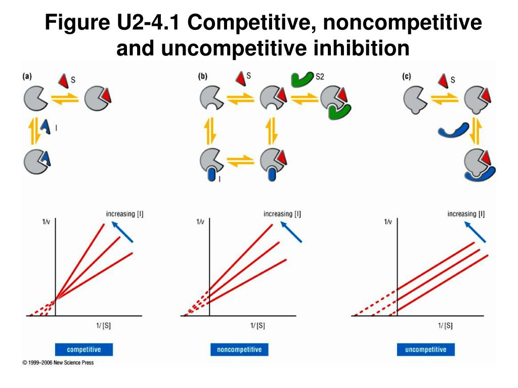 Figure U2-4.1 Competitive, noncompetitive and uncompetitive inhibition