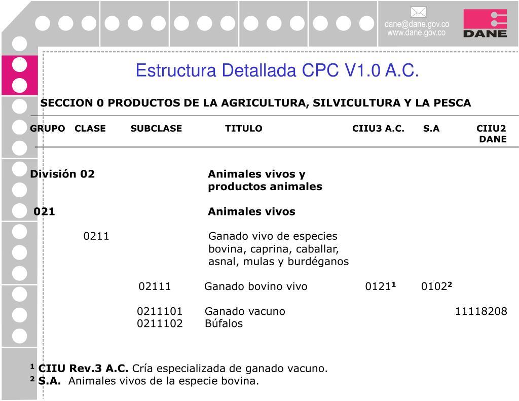 Estructura Detallada CPC V1.0 A.C.