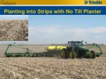 planting into strips with no till planter