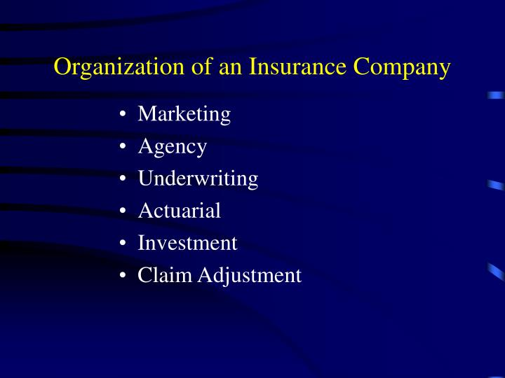 Organization of an Insurance Company
