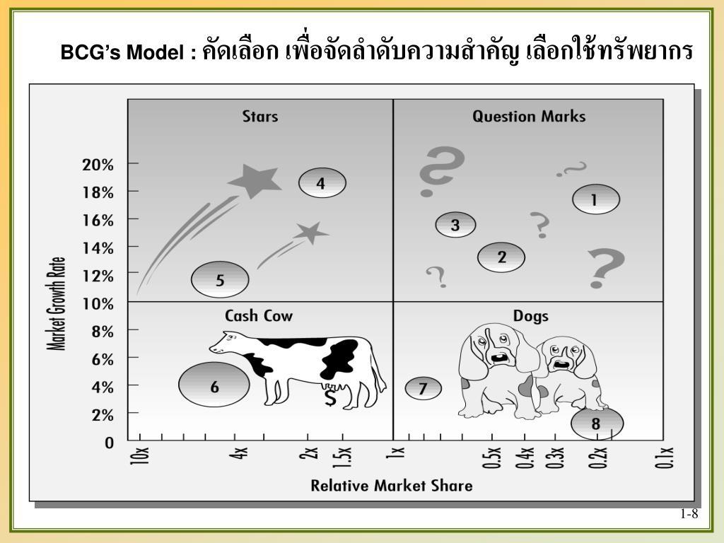 BCG's Model :
