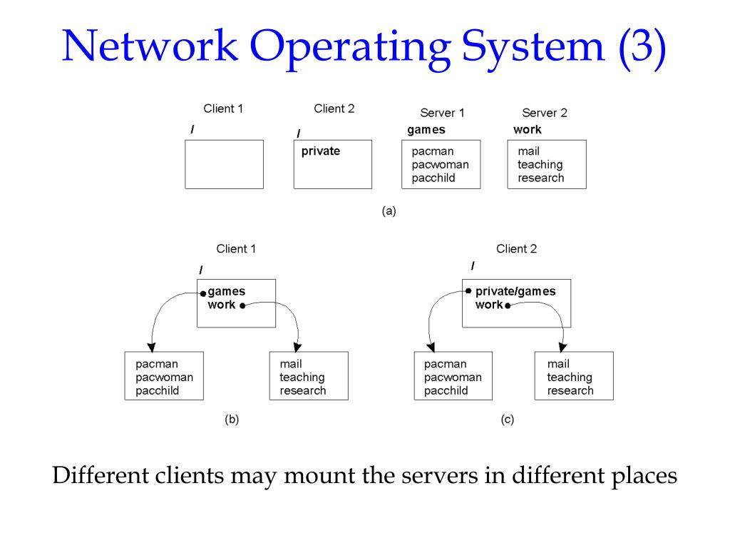 Network Operating System (3)