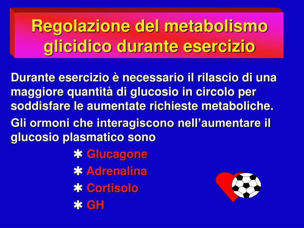 Regolazione del metabolismo glicidico durante esercizio