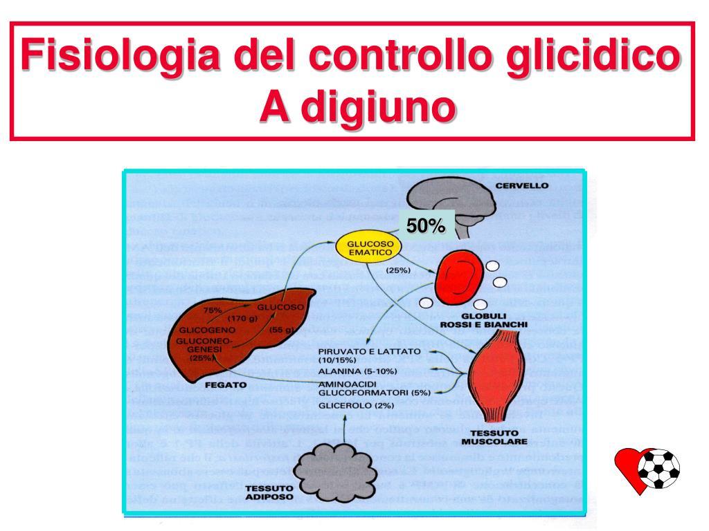 Fisiologia del controllo glicidico