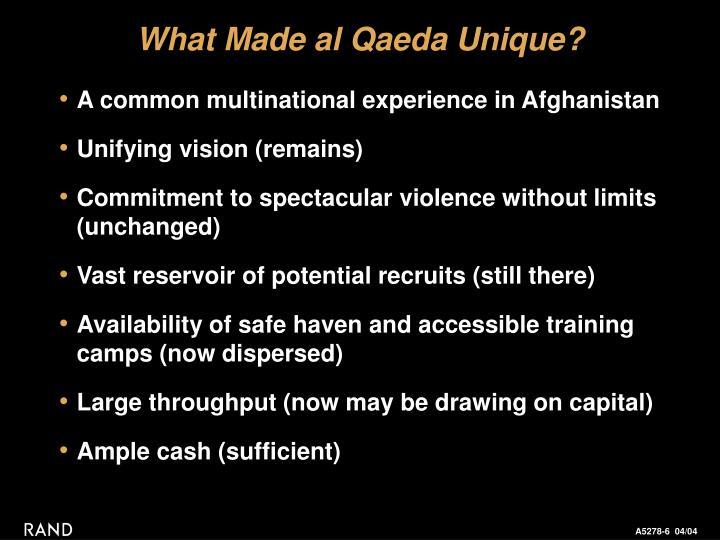 What Made al Qaeda Unique?