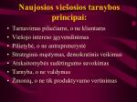Naujosios vie osios tarnybos principai l.jpg