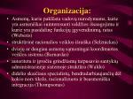 Organizacija l.jpg