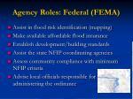 agency roles federal fema