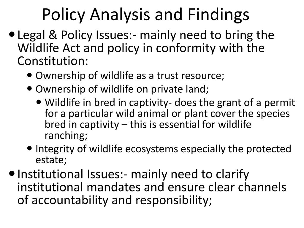 Policy Analysis and Findings
