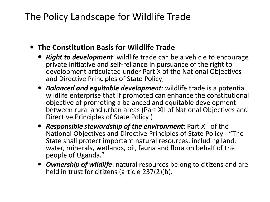 The Policy Landscape for Wildlife Trade