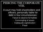piercing the corporate veil