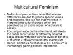 multicultural feminism