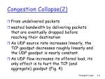 congestion collapse 2
