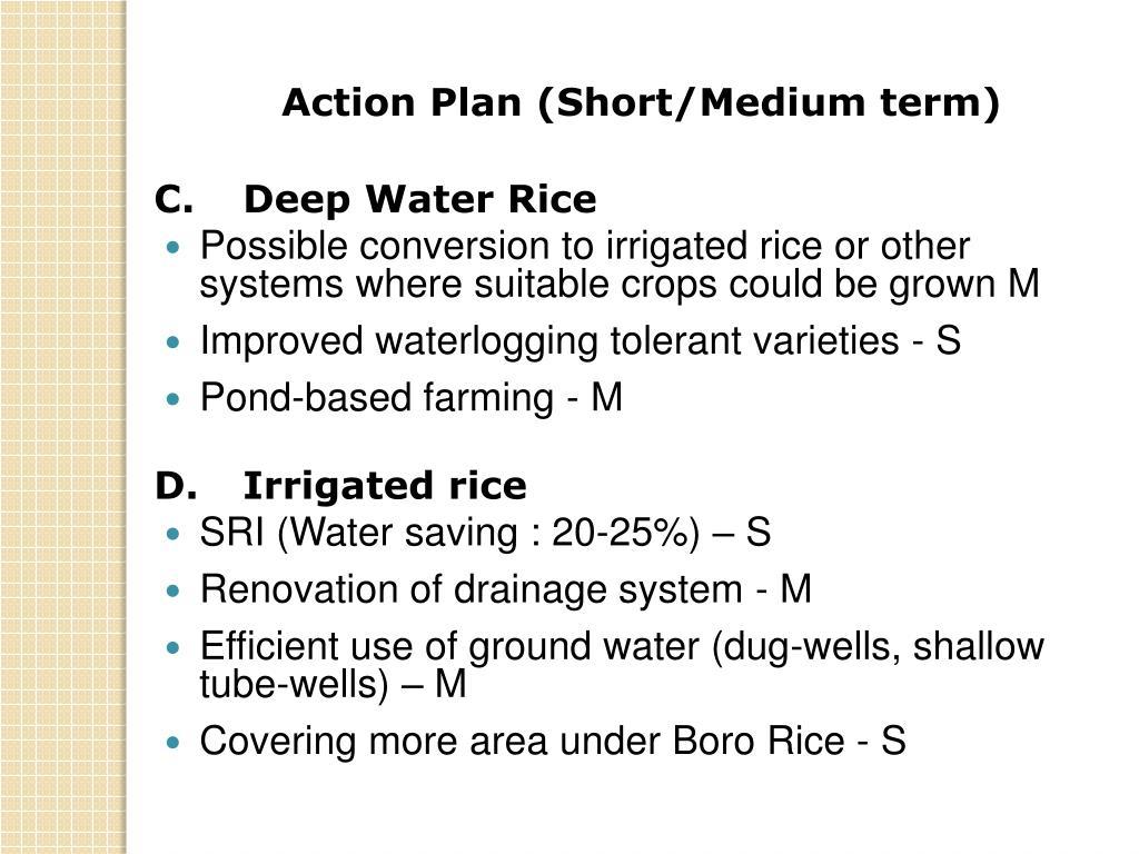 Action Plan (Short/Medium term)
