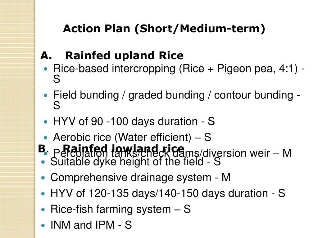 Action Plan (Short/Medium-term)