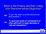 what is the primary and over riding site characterization objective