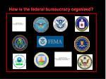 the federal bureaucracy10