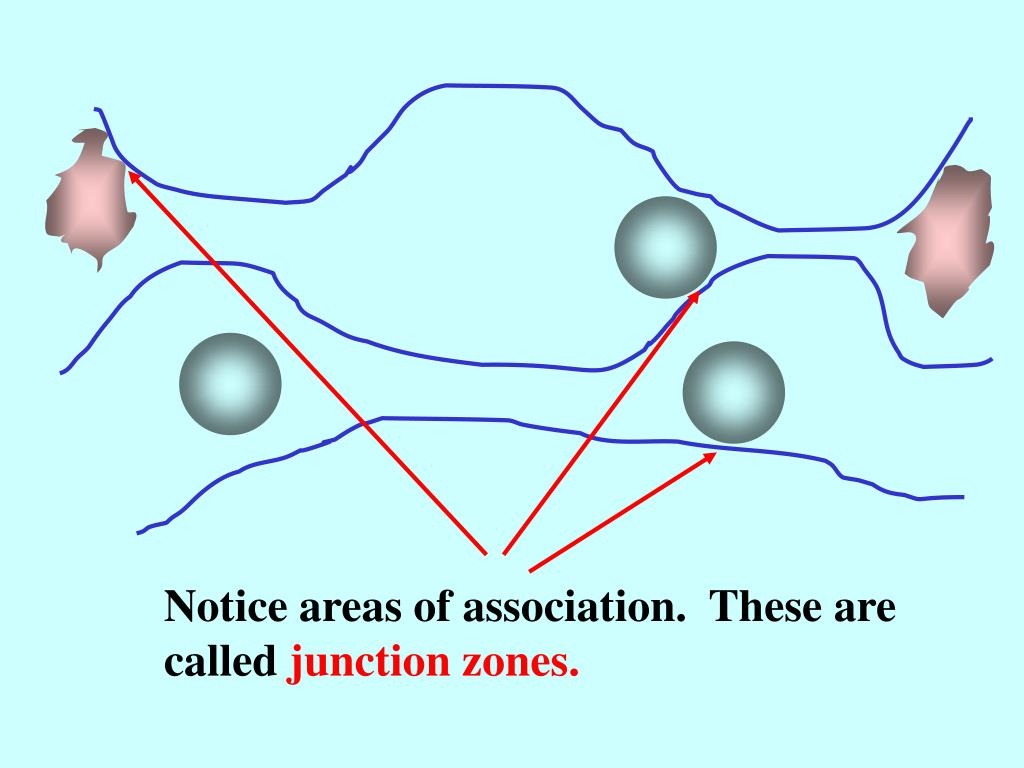 Notice areas of association.  These are