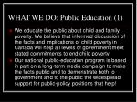 what we do public education 1