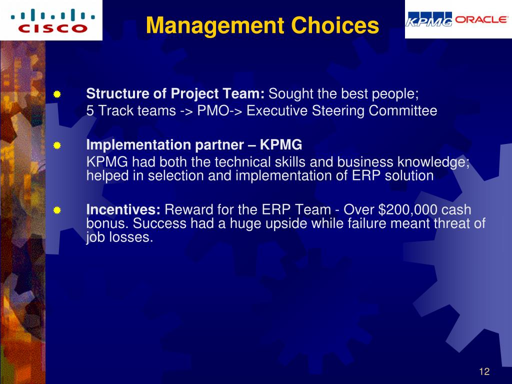 Structure of Project Team: