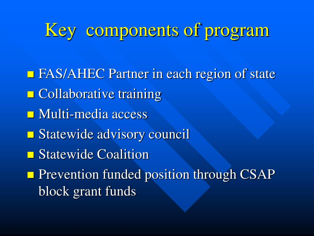 Key  components of program