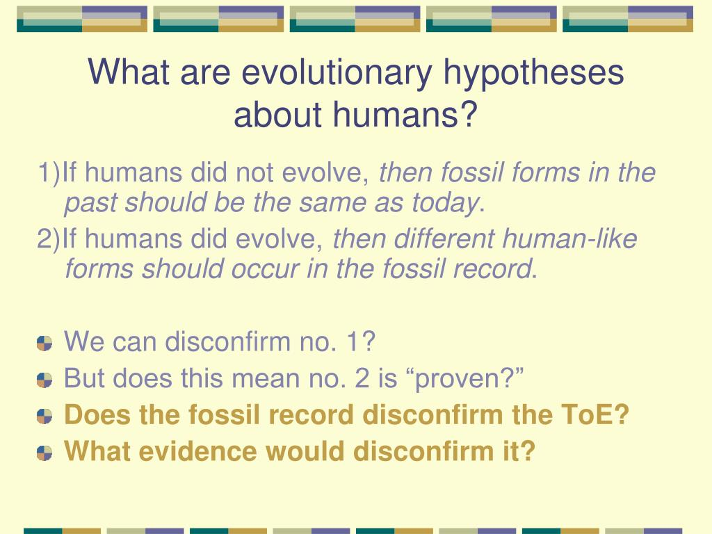 What are evolutionary hypotheses about humans?
