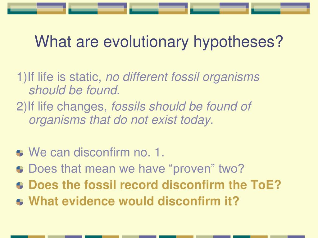 What are evolutionary hypotheses?