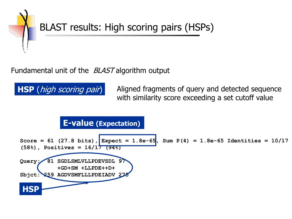 BLAST results: High scoring pairs (HSPs)