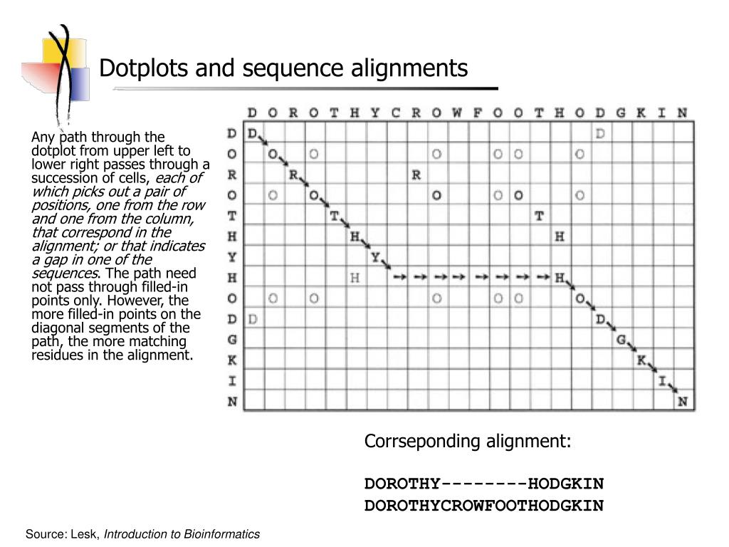 Dotplots and sequence alignments