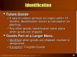 identification22