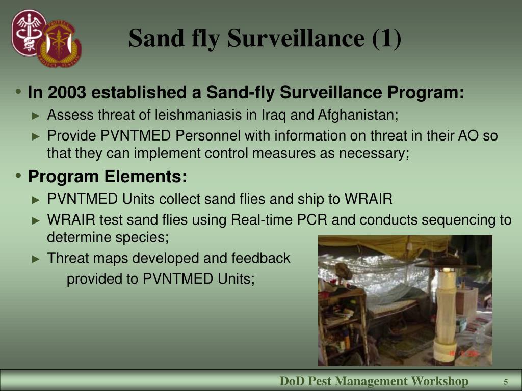 Sand fly Surveillance (1)
