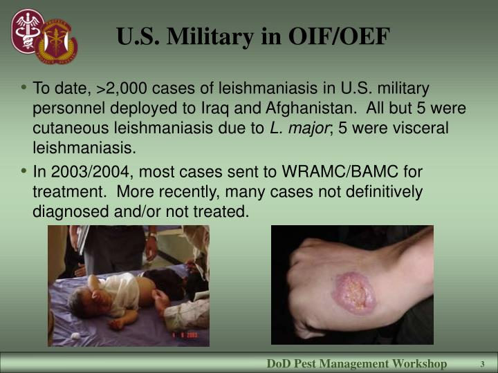U s military in oif oef
