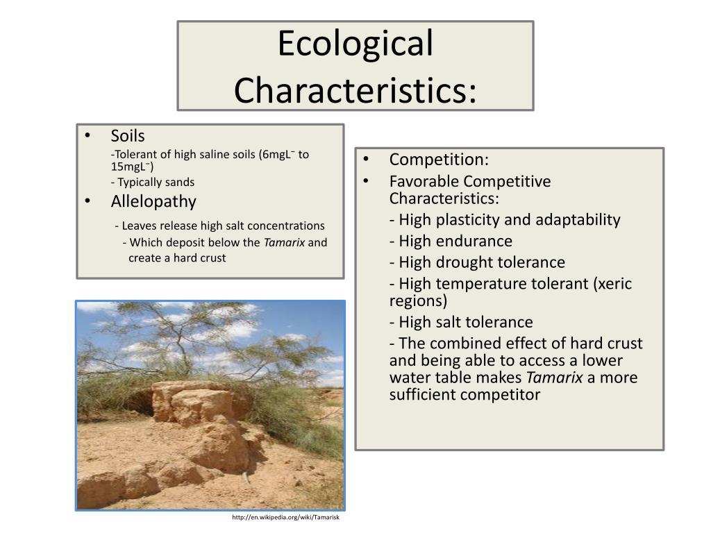 Ecological Characteristics: