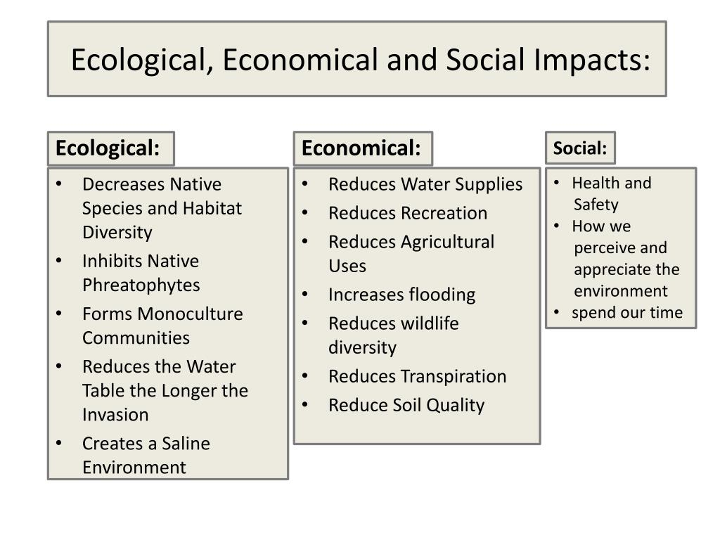 Ecological, Economical and Social Impacts: