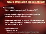 what s important in the lease and why22