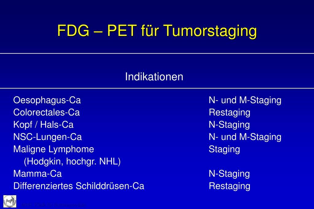 FDG – PET für Tumorstaging