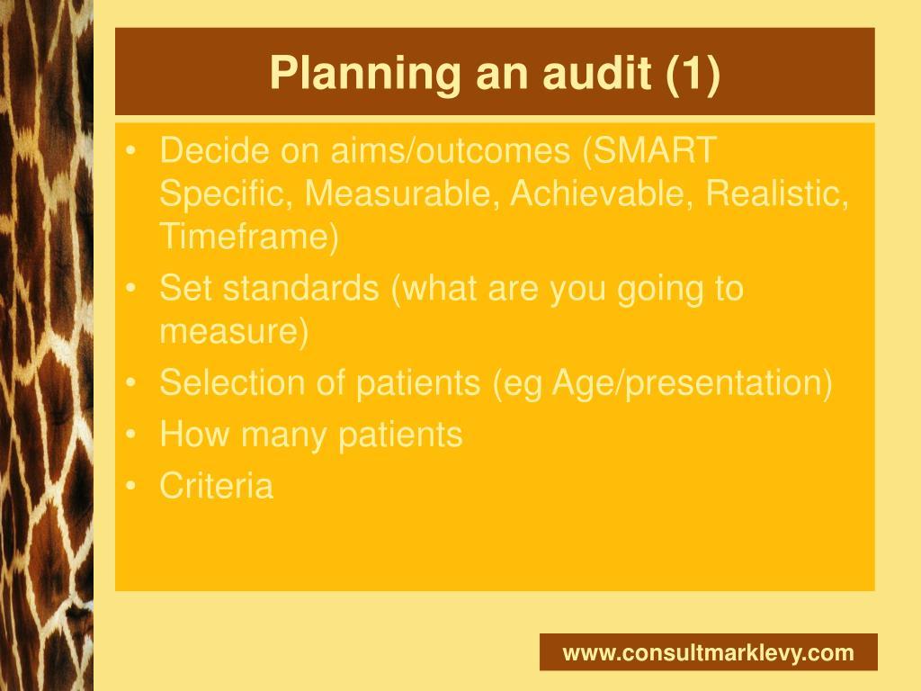 Planning an audit (1)