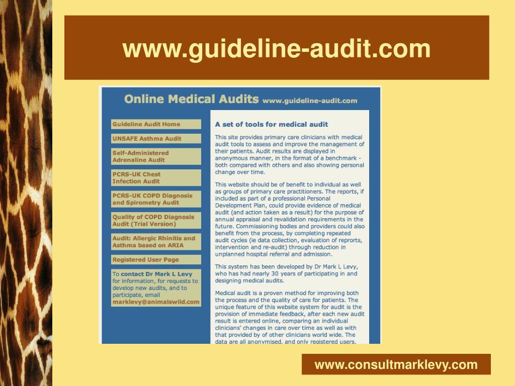 www.guideline-audit.com