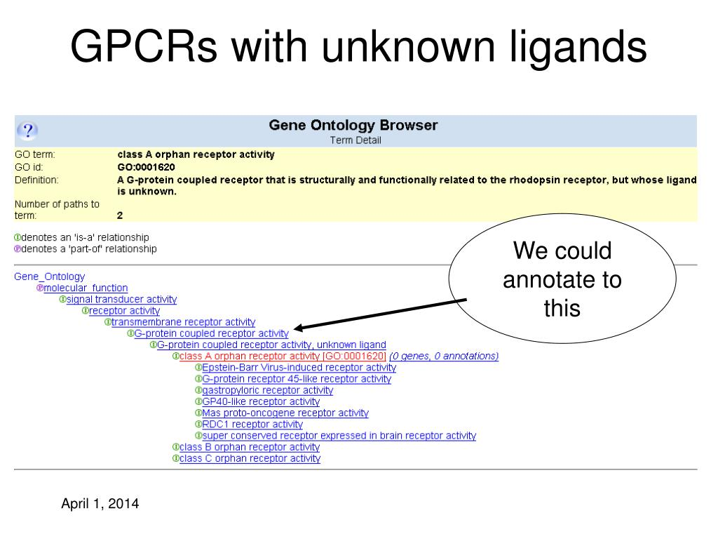 GPCRs with unknown ligands