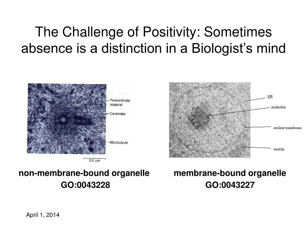 The Challenge of Positivity: Sometimes absence is a distinction in a Biologist's mind