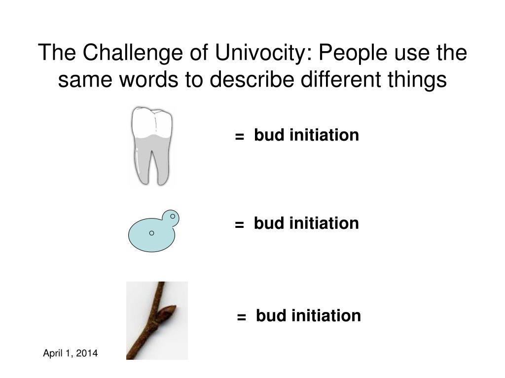 =  bud initiation