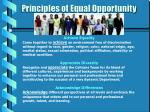 principles of equal opportunity