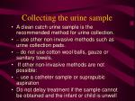 collecting the urine sample