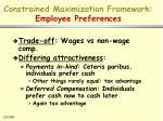 constrained maximization framework employee preferences