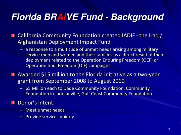 Florida br ai ve fund background