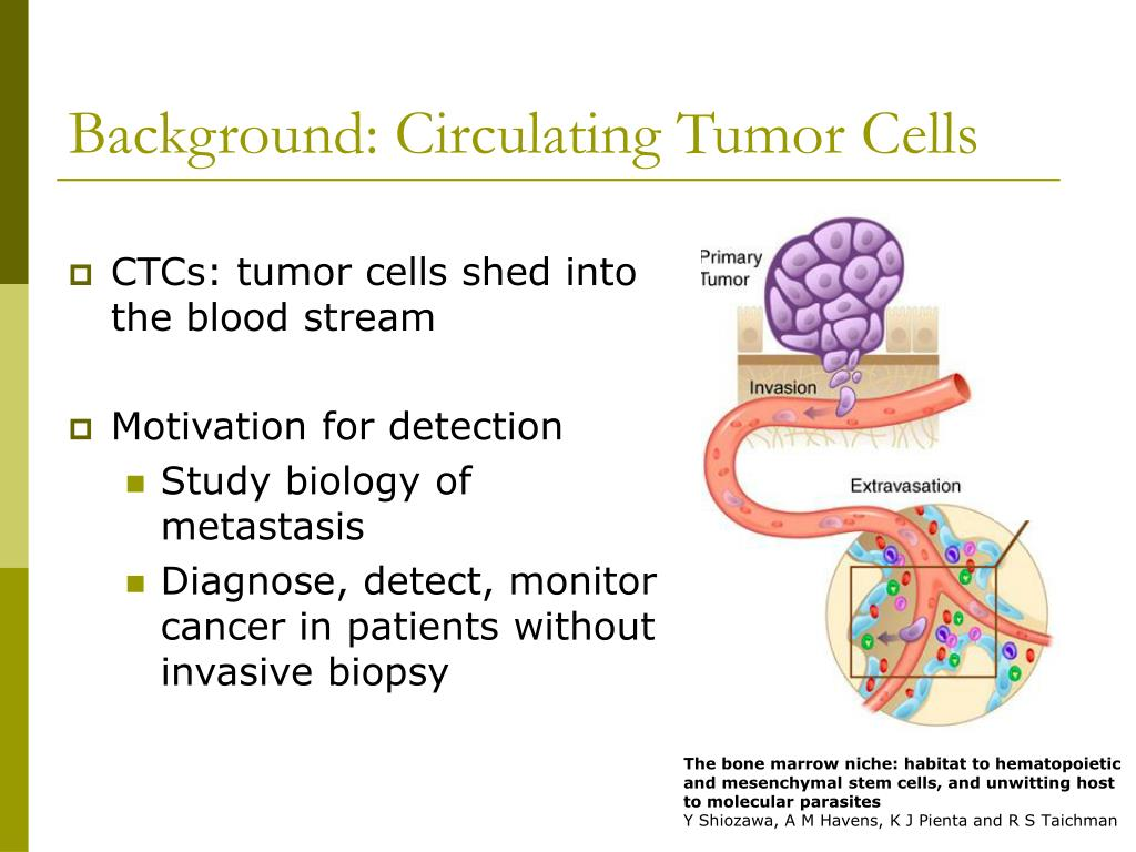 Background: Circulating Tumor Cells